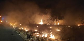 Kebakaran lahan di kawasan wisata Pantai Matras Bangka (foto:kompas.com)
