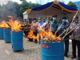 KPU Bea dan Cukai Tipe B Batam melakukan pemusnahan terhadap Barang Milik Negara hasil penindakan kepabeanan tahun 2019 senilai Rp7.5 miliar di halaman kantor BC Batam, Kamis (19/12/2019). Foto: Suryakepri.com/Romi