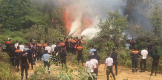 Ratusan personel gabungan BC, TNI AL, Polri dan Basarnas berjibaku memadamkan kebakaran hutan di pulau Merak, Karimun, Selasa (4/2/2020). Foto Suryakepri.com/ist