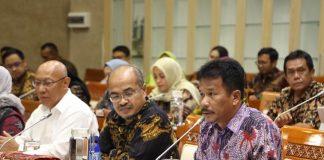 Ketua BP Batam Muhammad Rudi berbicara dalam RDP bersama Komisi VI DPR RI di Gedung DPR, Jakarta, Rabu (26/2/2020). Foto: Suryakepri.com/ist