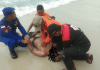Satu lagi korban ditemukan dalam kondisi mulut berbuih. Diduga sudah meninggal. (Foto Suryakepri.com/muhammad bunga asab)