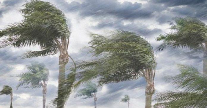 Ilustrasi Angin Kencang. Prediksi BMKG Hang Nadim Batam bahwa kecepatan angin yang cukup kencang di wilayah Kepulauan Riau menyebabkan berkurangnya potensi pembentukan awan-awan hujan.(foto/ist)