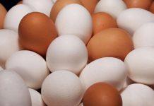 Telur Ayam (Foto: CBSNews)
