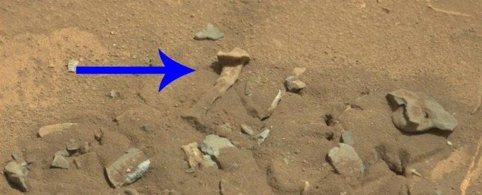 Benda mirip tulang paha manusia di Planet Mars yang tertangkap wahana angkasa luar milik NASA pada 14 Agustus 2014. (Foto NASA via Science Alert)
