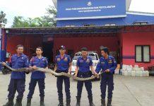 Satu di antara dua ekor ular sanca berukuran 3 dan 4 meter yang diduga melilit seorang remaja hingga tewas sepekan lalu, di Serpong, Kota Tangerang Selatan, berhasil ditangkap (Foto: Liputan6/Pramita)