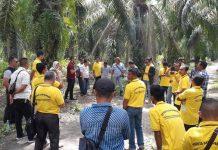 Masyarakat Lingga saat belajar mengenai perkebunan sawit di lokasi PT Surya Dumai di Kampar, Provinsi Riau.