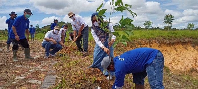 Sekretaris Kagama Prov Kepri, Yanti tengah menanam bibit pohon sumbangan Kagama Kepri dan Kota Batam