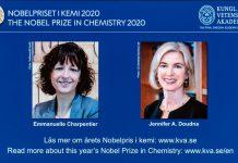 Peraih Hadiah Nobel Kimia 2020, Emmanuelle Charpentier dan Jennifer A. Doudna, terlihat di layar selama pengumuman hadiah di Stockholm, Swedia, pada 7 Oktober 2020. (Foto oleh Wei Xuechao / Xinhua)