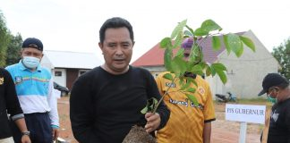 Pjs Gubernur Kepri Bahtiar Baharuddin saat melakukan Jalan Sehat sekaligus Penanaman Pohon di Halaman belakang Kantor Dinas Pendidikan Pulau Dompak, Tanjungpinang, Kamis (19/11)