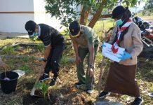 Kegiatan gerakan menanam 1 miliar pohon kelapa di Kepri (Suryakepri.com)