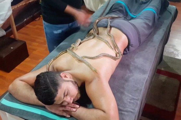 pijat ular (foto reuters via Nypost)