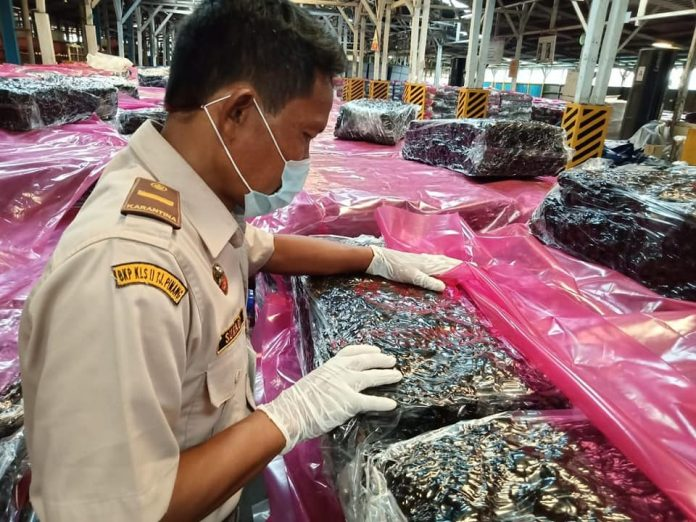 Petugas Karantina Pertanian Tanjungpinang saat mengecek komoditas yang mau diekspor (Suryakepri.com)