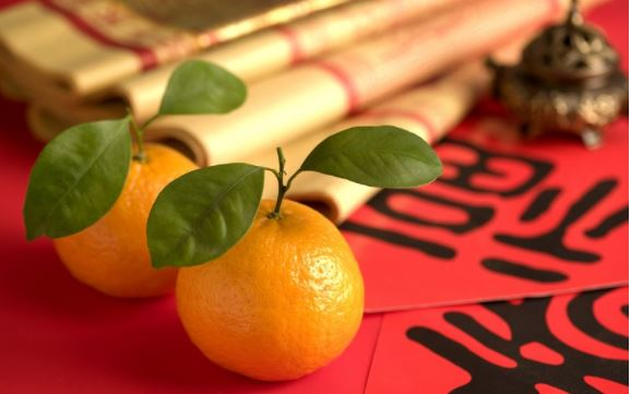 Jeruk Mandarin. (Foto: Pcwallart)