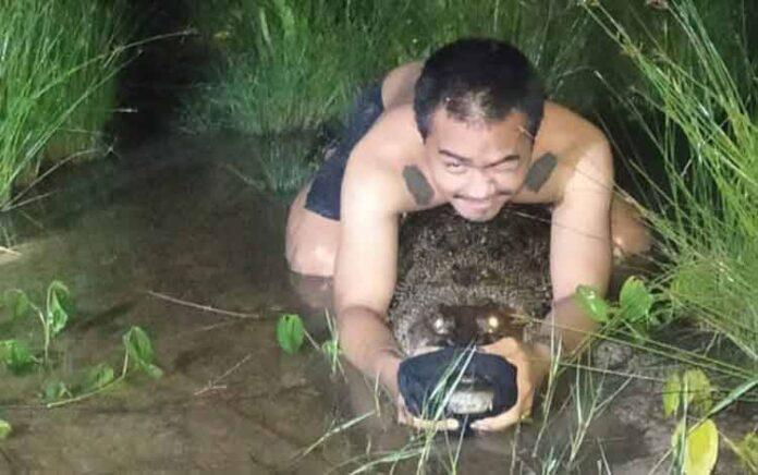 Seorang pemuda bersama teman-temannya berhasil menangkap buaya yang sedang naik ke daratan saat sungai pasang, Senin (17/1) malam.(suryakepri.com/borneonews.co.id)