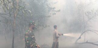 Hutan Bandara Hang Nadim Terbakar, TNI-POLRI Berjibaku Padamkan Ap