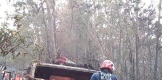 Satu unit mobil damkar Pemko Tanjungpinang yang terbakar saat memadamkan api di Hutan Lindung (Suryakepri.com/ist)