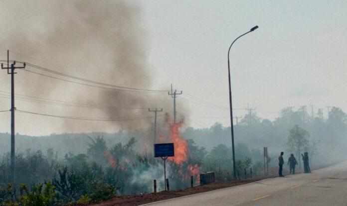 Kebakaran lahan di Jalan Lintas Barat Bintan (Suryakepri.com/Muhammad Bunga Ashab)