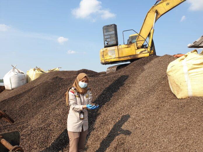 Pejabat Karantina Pertanian Karimun, Okta saat melakukan pemeriksaan Cangkang Sawit Karimun sebelum dikirim ke Bintan, Rabu (24/2/2021). Foto Suryakepri.com/IST