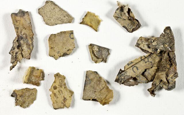 Potongan-potongan dari gulungan Kitab Dua Belas Nabi Kecil ditemukan dalam ekspedisi Gurun Yudea sebelum konservasi mereka. (Shai Halevi, IAA via ToI)