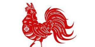 Gambar Ilustrasi Shio Ayam