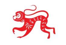 Gambar Ilustrasi Shio Monyet