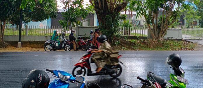 Sejumlah pengendara berteduh di bawah pohon saat hujan mengguyur wilayah Tanjungpinang (Suryakepri.com/Muhammad Bunga Ashab)