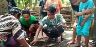 Ular sanca 4 meter yang ditangkap di sungai Kota Pasuruan/Foto: Muhajir Arifin/detikcom