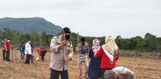 Kapolsek Bintan Utara Kompol Suharjono saat menanam jagung di Kampung Tangguh Desa Sri Bintan (Suryakepri.com)