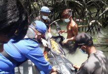 Satpolairud Polres Karimun bersama warga mengevakuasi penemuan mayat yang tersangkut di pohon bakau, Senin (12/4/2021). Foto Suryakepri.com/Satpolairud Polres Karimun