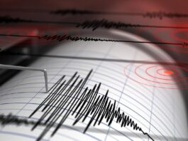 Foto: Ilustrasi gempa bumi (iStock)