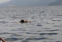 Penemuan mayat pria mengapung di Danau Toba, Medan/ Foto: posmetro-medan.com