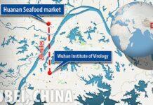 Laboratorium Biosafety Wuhan hanya berjarak 20 mil atau 32 kilometer dari Pasar Basah Huanan, yang selama ini disebut sebagi lokasi pertama virus corona melompat dari hewan kepada manusia. China berencana membangun lebih banyak laboratorium seperti ini. (Foto dari Daily Mail)