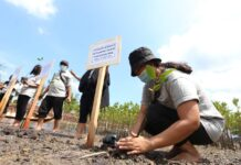 Yayasan Del, Rumah Faye, melakukan aksi penanaman 1.000 bibit pohon bakau di wilayah pesisir pantai Pulau Ngenang, Kecamatan Nongsa.