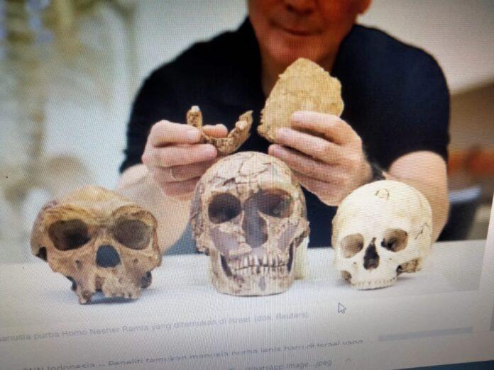 Fosil manusia purba Homo Nesher Ramla yang ditemukan di Israel. (dok. Reuters)
