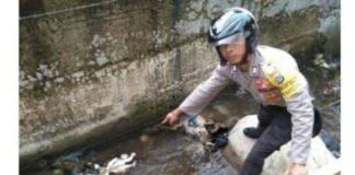 Polisi menunjukan lokasi penemuan bayi di Kota Tangsel. (Foto: RRI)