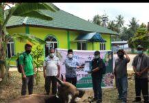 PT Timah Tbk kembali tebar bantuan hewan kurban di Kepri dan Riau. Foto Suryakepri.com/IST