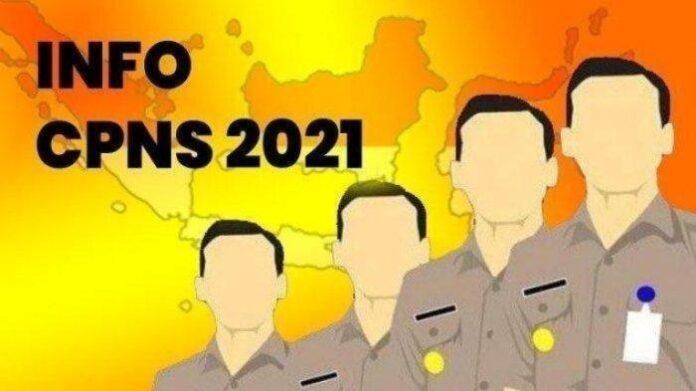 Foto: Ilustrasi CPNS 2021