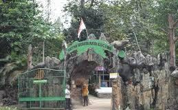 Foto Kawasan Hutan Mata Kucing