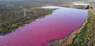 Danau di Patagonia, Argentina, berubah warna menjadi pink.