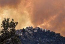 Kebakaran hutan di wilayah Kabyle, timur Aljir, 10 Agustus. (Foto: Ryad Kramdi/AFP/Getty Images via Guardian)