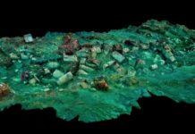 Arkeolog menemukan buah berusia 2400 tahun. Buah ini ada dalam keranjang anyaman yang ditemukan di kota Thonis Herachleion di bawah laut.(Foto: Arsip Christoph Gerigk/Franck Goddio/Hilti Foundation)