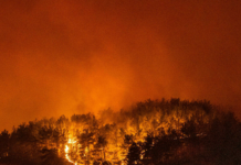 Api melahap hutan di desa Akcayaka di Turki (Foto: AFP/Yasin AKGUL via France24)