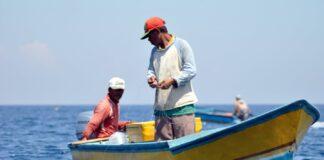 Ilustrasi nelayan. Malaysia masih menahan dua dari enam nelayan tradisional Indonesia asal Bintan yang ditangkap karena dianggap memasuki wilayah perairan mereka secara ilegal. (Foto dari eco-business.com)