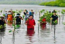 Presiden Joko Widodo rela basah-basahan diterpa hujan dan nyebur ke laut untuk melaksanakan agenda penanaman mangrove bersama masyarakat di Pantai Setokok, Kecamatan Bulang, Kota Batam, Provinsi Kepulauan Riau, Selasa (28/9/2021).