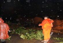 Longsor dan pohon tumbang mengakibatkan terhambatnya akses jalan yang menghubungkan Kota Solok dan Kota Padang, Sumatera Barat. (Foto: BPBD KOta Padang via RRI.co.ic)