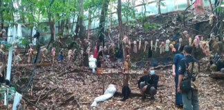 Pemilik Museum Santet Talaga Langit, Ujang Bustomi (kanan), berdiri di antara boneka-boneka yang bergelantungan di pepohonan. (Foto: tvonenews.com)
